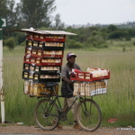 1-Making-ends-meet-....-aman-pushes-a-bicycle-laden-with-bread-for-sale-a-along-the-Harare-to-Masvingo-road-recently