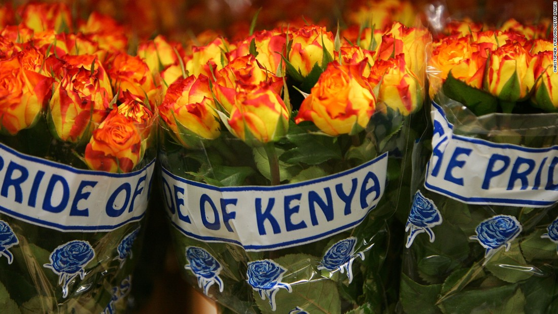150311135718-kenya-flowers-super-169